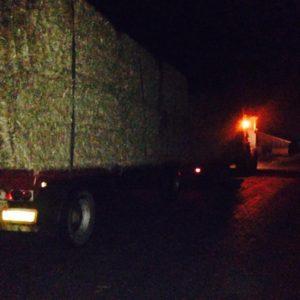 Halmtransport om natten med traktor