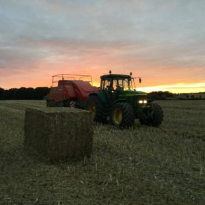 Høsten 2016 traktor presser baller ved solnedgang